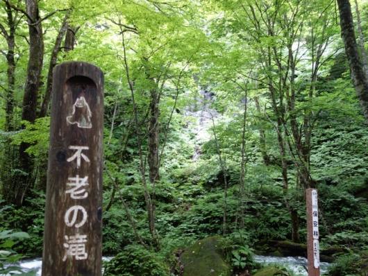 奥入瀬渓流 不老の滝