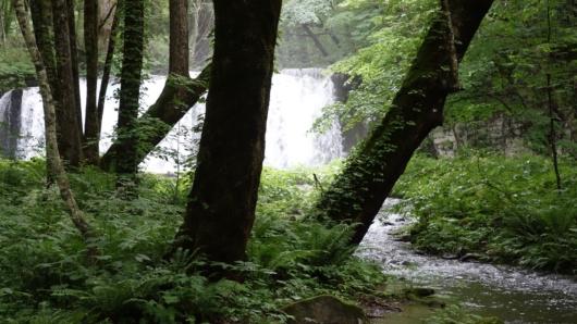見えて来た銚子大滝